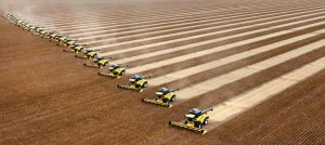 A soybean harvest in northern Brazil. Hedge funds and other investors are buying up farmland around the world.
