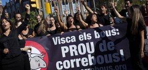 Ativistas pelos direitos dos animais comemoram a última tourada da Catalunha