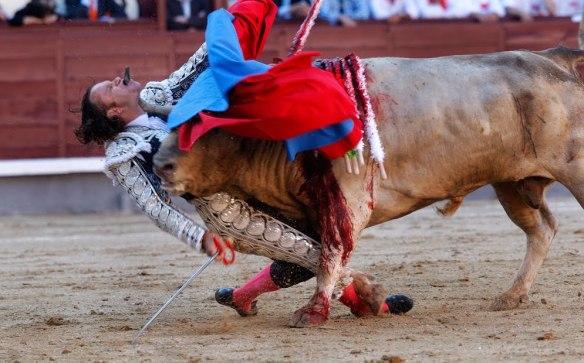 Gosto quando o touro vence...